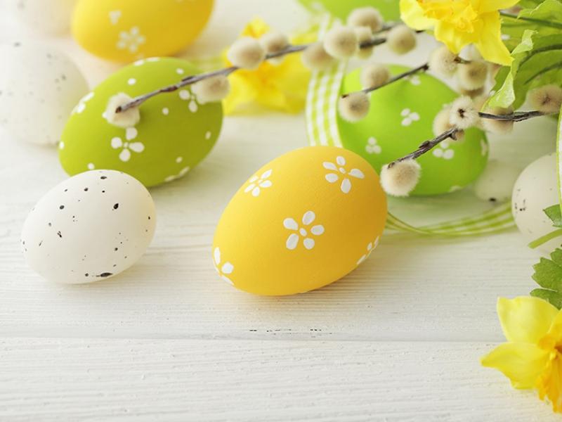 Ostern  Angebot